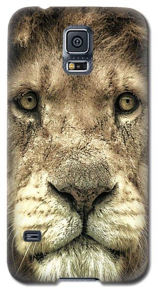 Lion Portrait Galaxy S5 Case