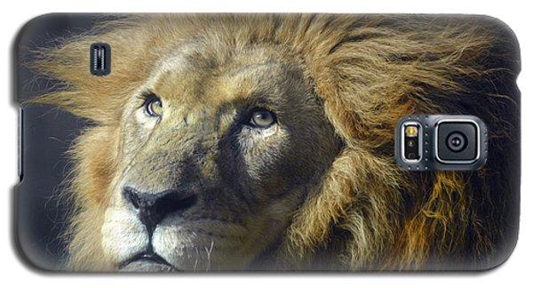 Galaxy S5 Case featuring the photograph Lion Portrait by Savannah Gibbs