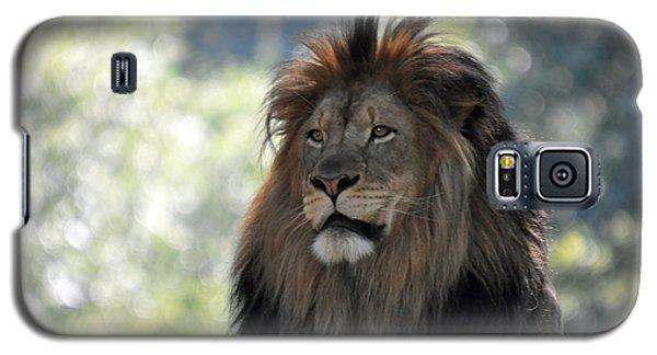 Lion Series 9 Galaxy S5 Case