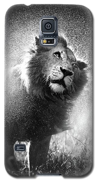 Cats Galaxy S5 Case - Lion Shaking Off Water by Johan Swanepoel