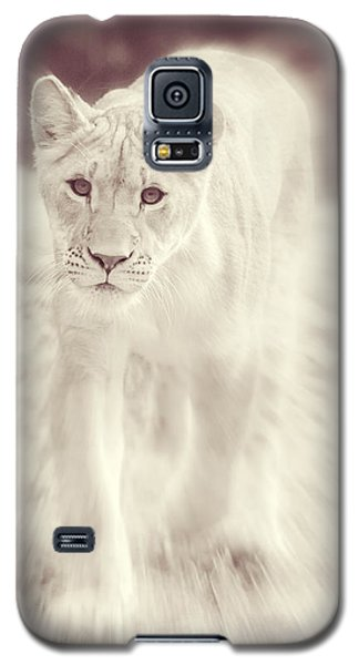 Lion Spirit Animal Galaxy S5 Case