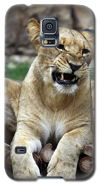 Lioness 2 Galaxy S5 Case