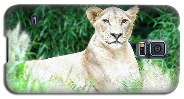 Lioness Galaxy S5 Case