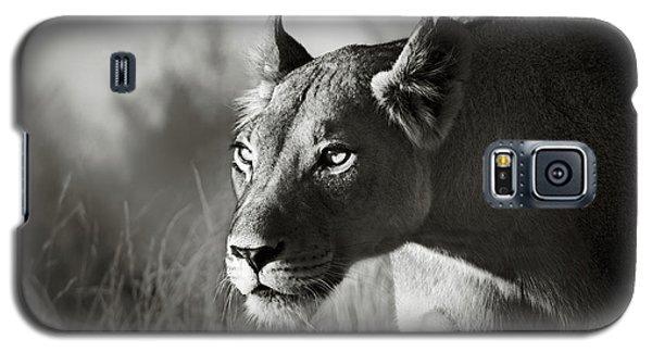 Wildlife Galaxy S5 Case - Lioness Stalking by Johan Swanepoel
