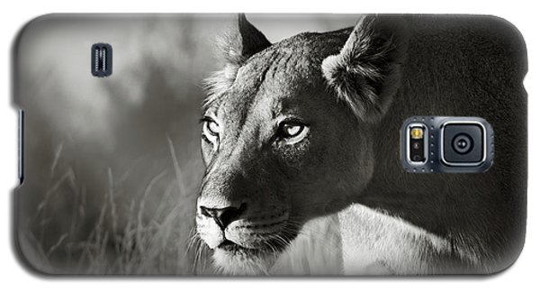 Portraits Galaxy S5 Case - Lioness Stalking by Johan Swanepoel