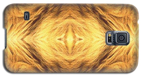 Lion's Eye Galaxy S5 Case by Maria Watt