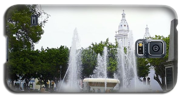 Lions Fountain Wide Galaxy S5 Case