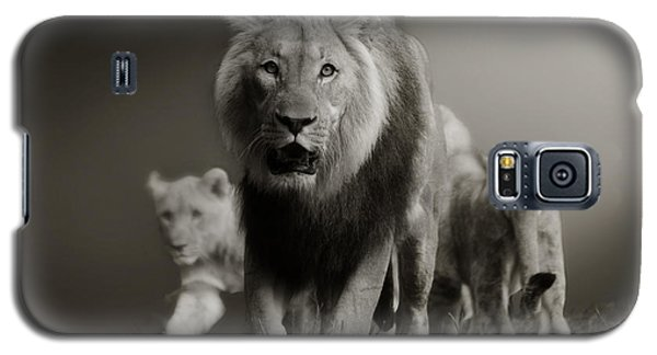 Galaxy S5 Case featuring the photograph Lions On Their Way by Christine Sponchia