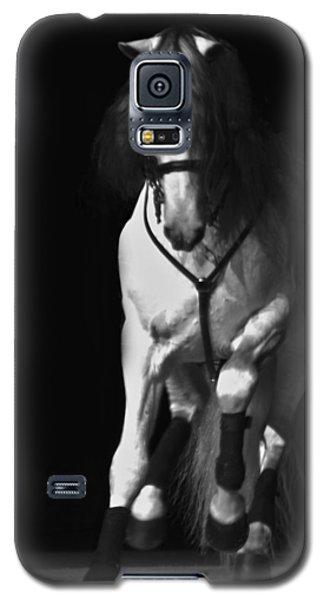 Lipizzan 1 Galaxy S5 Case