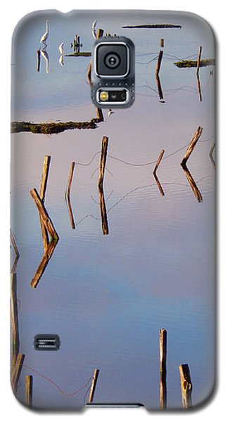 Liquid Assets Galaxy S5 Case