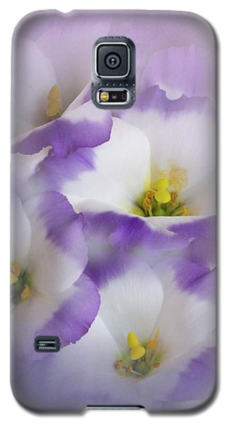 Galaxy S5 Case featuring the photograph Lisianthus Grouping by David and Carol Kelly