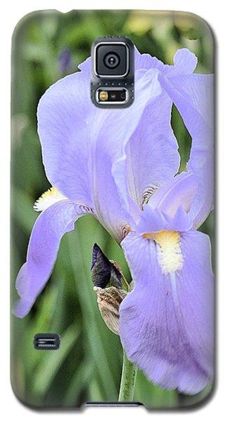 Lissy Iris Galaxy S5 Case by Marsha Heiken