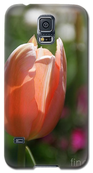 Lit Tulip 01 Galaxy S5 Case