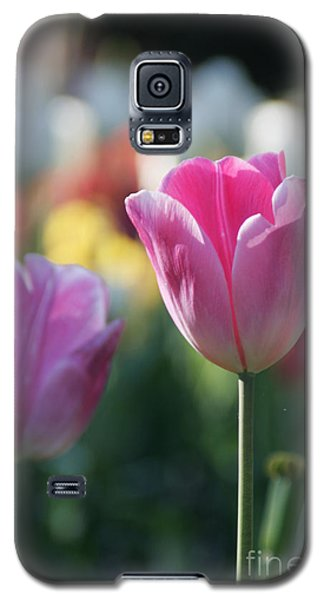 Lit Tulip 05 Galaxy S5 Case