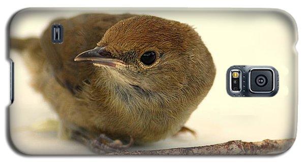 Little Bird 2 Galaxy S5 Case