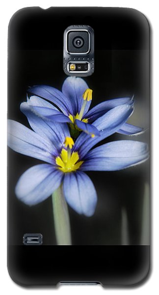 Little Blue Flowers Galaxy S5 Case