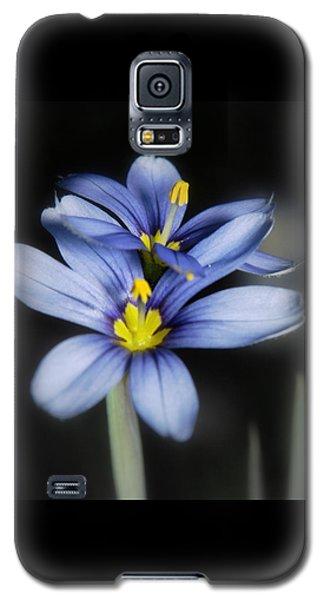Galaxy S5 Case featuring the photograph Little Blue Flowers by Karen Musick