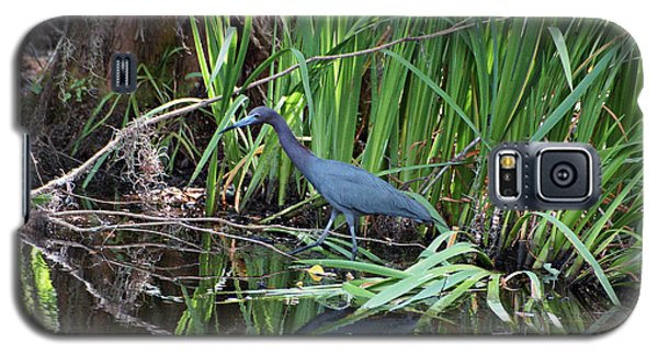 Galaxy S5 Case featuring the photograph Little Blue Heron by Sandy Keeton