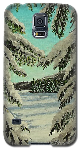 Little Brook Cove Galaxy S5 Case