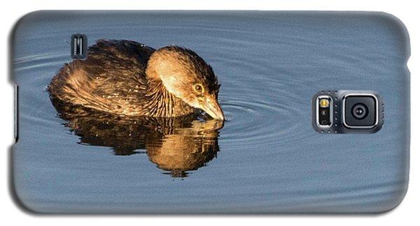 Little Brown Duck Galaxy S5 Case