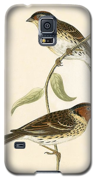 Little Bunting Galaxy S5 Case