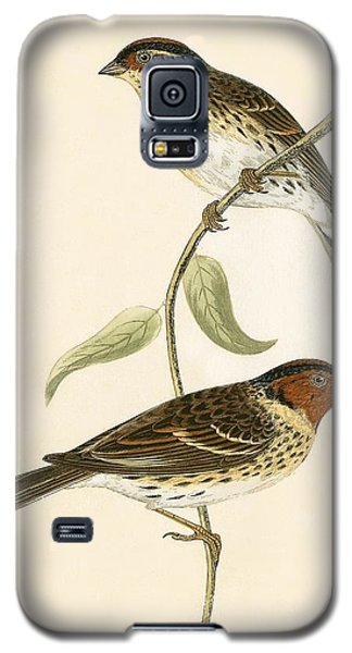 Little Bunting Galaxy S5 Case by English School