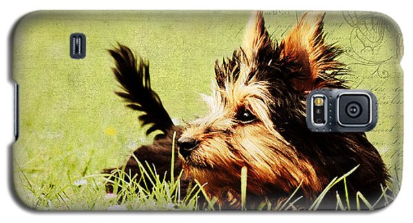 Little Dog Galaxy S5 Case