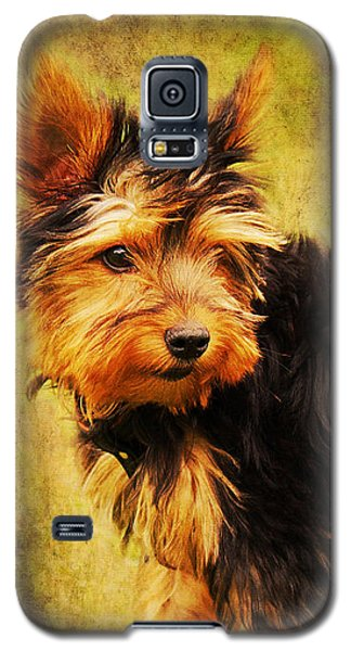 Little Dog II Galaxy S5 Case