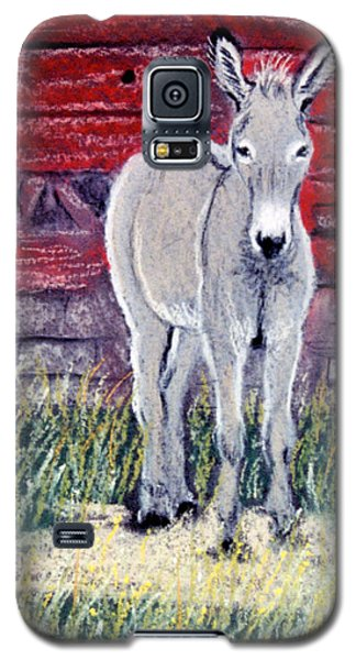 Galaxy S5 Case featuring the pastel Little Donkey by Jan Amiss