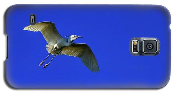 Little Egret, Egretta Garzetta Galaxy S5 Case