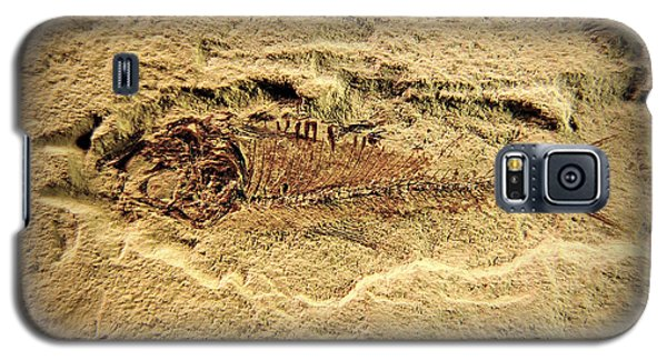 Galaxy S5 Case featuring the photograph Little Fish by Scott Kingery