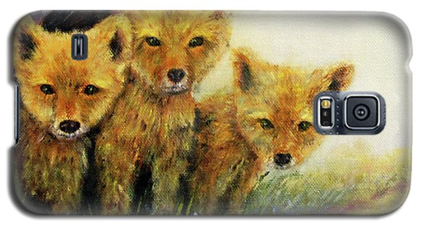 Little Foxes Galaxy S5 Case