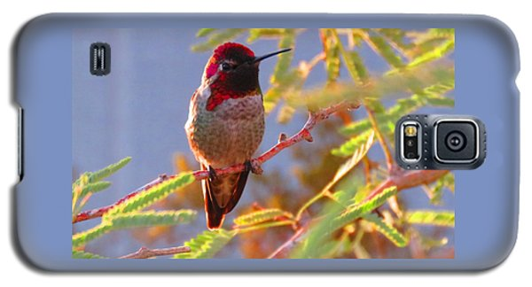 Little Jewel With Wings Second Version Galaxy S5 Case