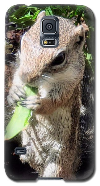 Little Nibbler Galaxy S5 Case