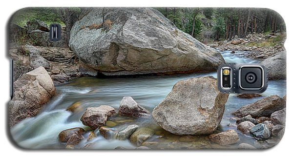 Galaxy S5 Case featuring the photograph Little Pine Tree Stream View by James BO Insogna