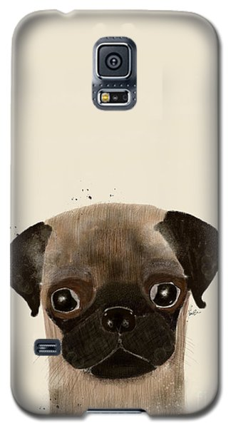 Galaxy S5 Case featuring the photograph Little Pug by Bri B