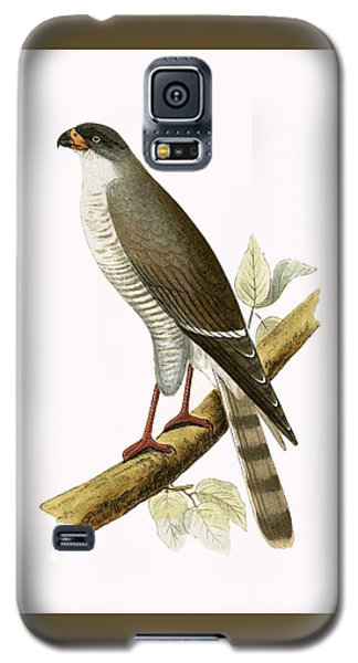 Little Red Billed Hawk Galaxy S5 Case