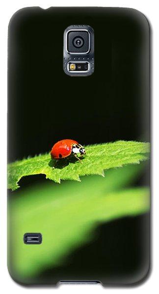 Little Red Ladybug On Green Leaf Galaxy S5 Case