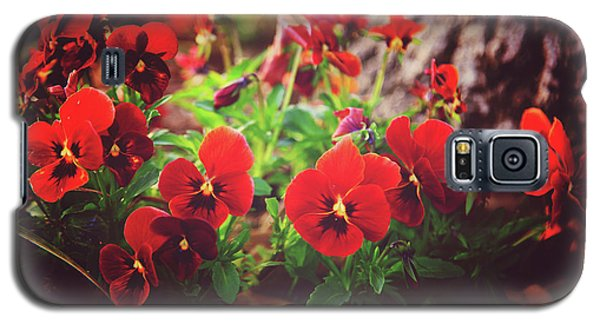 Little Red Pansies Galaxy S5 Case by Toni Hopper