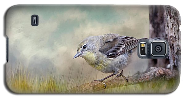 Galaxy S5 Case featuring the photograph Little Warbler In Louisiana Winter by Bonnie Barry