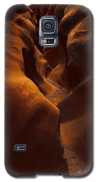 Little Wild Horse Galaxy S5 Case