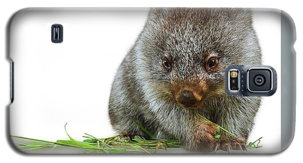 Little Wombat Galaxy S5 Case