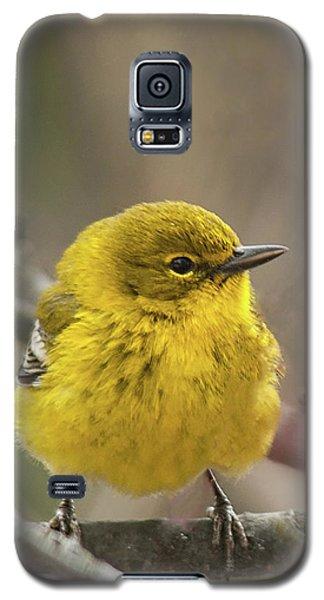 Little Yellow Galaxy S5 Case