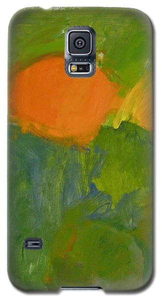 Galaxy S5 Case featuring the painting Little Yellowtail  by Cliff Spohn