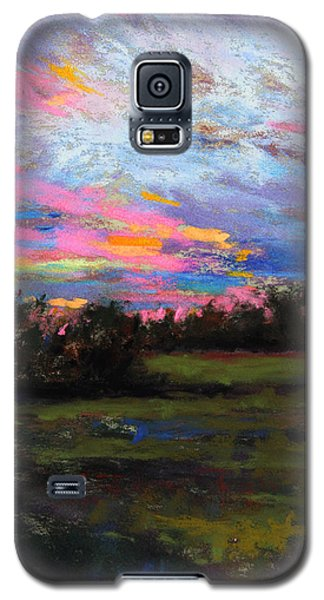 Live Oak Evening Galaxy S5 Case