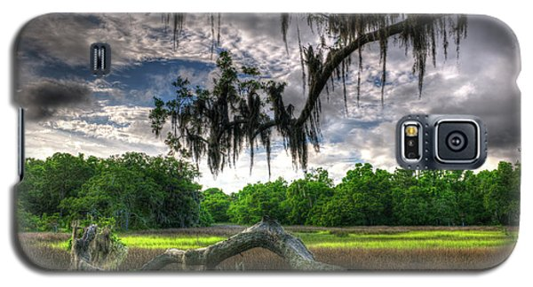 Live Oak Marsh View Galaxy S5 Case
