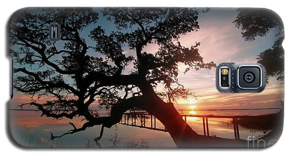 Galaxy S5 Case featuring the photograph Live Oak Sunrise by Benanne Stiens