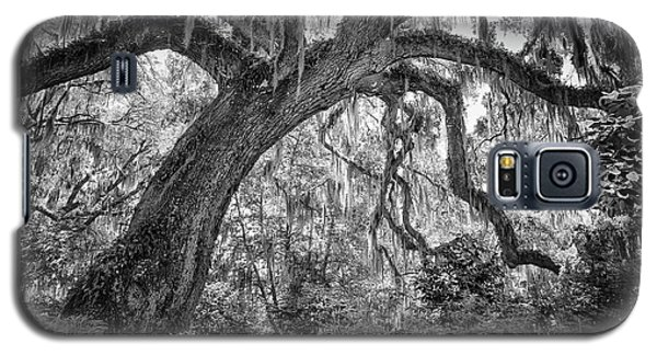 Live Oak Galaxy S5 Case