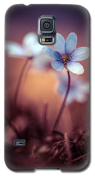 Liverworts Galaxy S5 Case by Jaroslaw Blaminsky