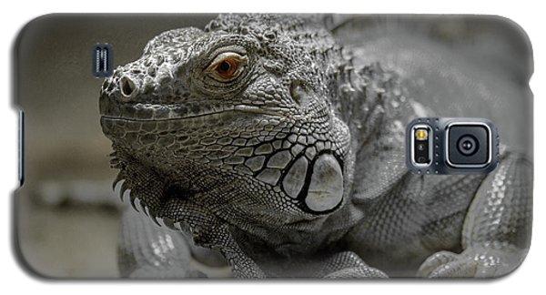 Liz Galaxy S5 Case
